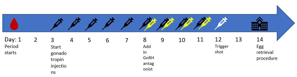 Example of an Antagonist Protocol