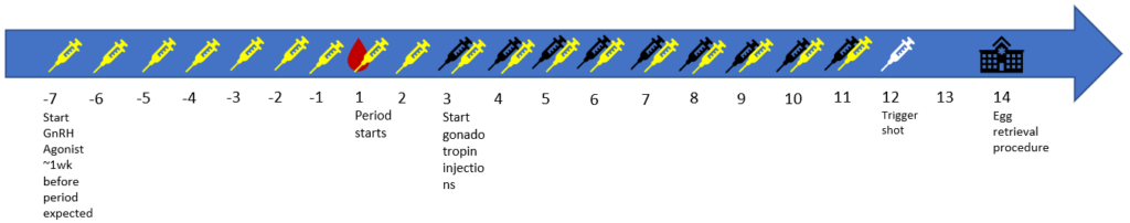 Example of a Long Agonist Protocol